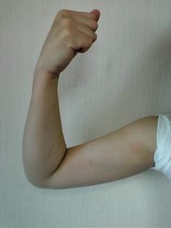 見よっ!この筋肉を!
