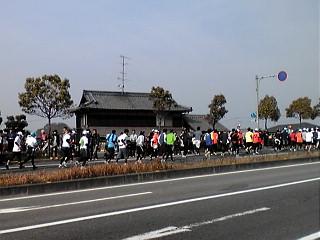愛媛マラソンの日。