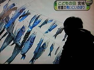 子供達のための鯉のぼり