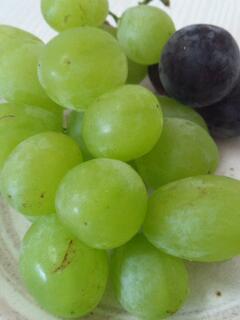 緑の宝石の果物とは?